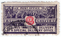 (I.B) New Zealand Postal : Express Delivery 6d (1903)