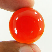 24.55 Ct Natural Orange Carnelian Cabochon Loose Gemstone Stone - R3108