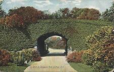 Postcard NY New York Buffalo Delaware Park Ivy Arch 1907 Printed in Germany