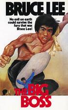 Fist Of Fury - Jing wu men (1972) Bruce Lee cult movie poster print 8