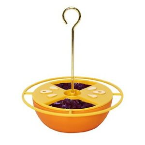 Heath CITRUS BUFFET ORIOLE FEEDER, Holds Nectar, Jelly, Fruit or Mealworms   #dm