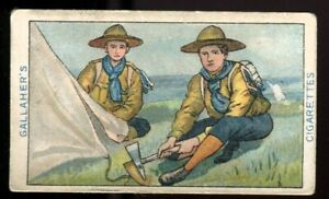Tobacco Card,Gallaher,BOY SCOUT SERIES,Brown Back,1911,Striking a Bell Tent,#96