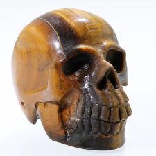 "2.02""GOLD Tiger's eye Carved Crystal Skull, Realistic,Crystal Healing,N55"