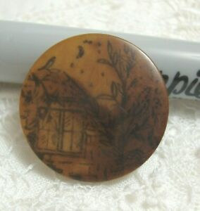 """Vintage Vegetable Ivory Picture Button 1""""  Moon Stars House"""