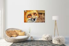 Wandtattoo Wandsticker Aufkleber Fuchs Grösse: 120 x 70 cm