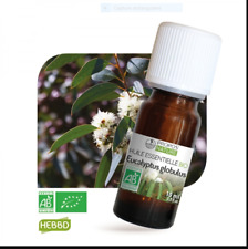 Huile essentielle Eucalyptus Globulus BIO 10 ml