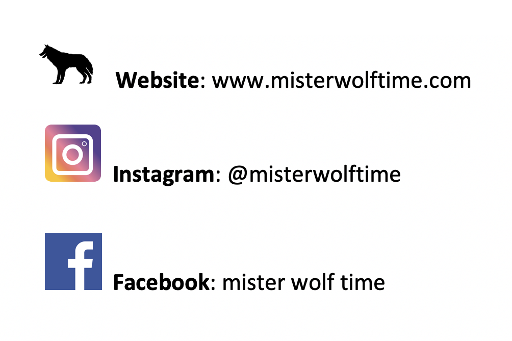 Mister Wolf Time