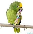 Newest Parrot Chewy Cubes Pet Bird Budgie Cockatiel Swing Bite Climb Chew toys