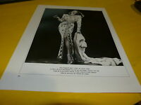 RITA HAYWORTH - Mini poster Noir & blanc 6 !!!