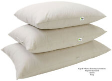Sleep Pillows Organic - Kapok or Latex fill Neck Roll King Queen etc Made in USA