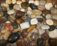 3+ Pounds Polished Unknown Mixed Stones Specimens - Estate Lot