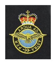 Royal Air Force Blazer Badge R1891