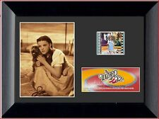 Film Cell Genuine 35mm Framed & Matted Wizard of Oz Toto Special Edition S3 5027