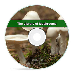 50 Books on Mushrooms, Fungi Spawn, How To Grow, Cook Find Edible Hunt CD H52