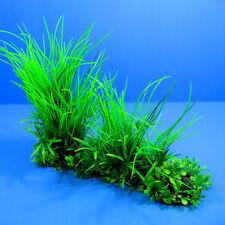 """New listing 3D Aquarium Plastic Plants 10""""L Ornament fish tank Decoration pet"""
