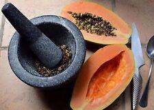 Semillas De Papaya Seca envío gratuito de SriLanka - 100g
