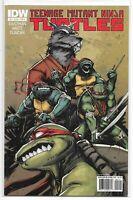 Teenage Mutant Ninja Turtles 2 A Dan Duncan Variant IDW 1st TMNT NM Eastman
