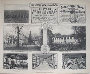 1908 CHATEAU MOUTON D'ARMAILHACQ BORDEAUX WINE WINERY VITICULTURE  HENRY GUILLIE