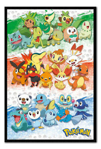 Pokemon First Partners Poster MAGNETIC NOTICE BOARD Inc Magnets | UK Seller
