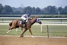 1973 Ron Turcotte SECRETARIAT Belmont Stakes Horse Racing 8x10 Photo TripleCrown