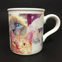 Carlton Cards Stoneware Coffee Mug Cup Cats Kittens MG0171 10 Oz