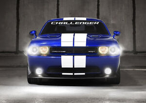 Perfect Fit Curved Windshield Decal FITS challenger