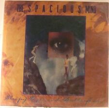 Spacious Mind Sleepy Eyes And Butterflies USA 2 Albums