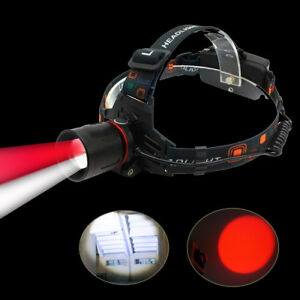 2 in 1 Red+White Light Zoom Headlamp for Bees Aviation Astronomy Red Head Light