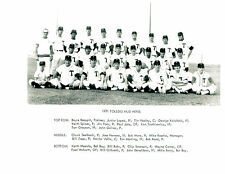 1971 TOLEDO SOX 8X10 TEAM PHOTO  BASEBALL OHIO USA