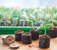 Romberg 50 QUELLTABS 100% torffrei Anzucht 3,6 cm Garten Aussaat Pots Erde Tabs