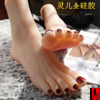 Details about  /silicone Lifesize Female mannequin foot display Model shoes socks size 6.5 3706
