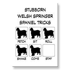 Welsh Springer Spaniel Stubborn Tricks Fridge Magnet Steel Case Funny