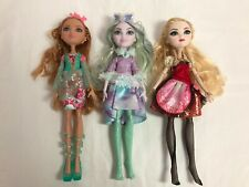 More details for ever after high crystal winter ashlynn ella apple white bundle read description