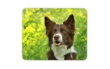 Brown Border Collie Mouse Mat Pad - Dog Dogs Sheep Farm Fun Gift Computer #8628