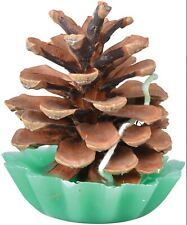 Pack of 10 Pinecone & Wax Fire Starters Fancy Flames All Natural Firelighters