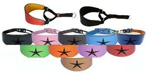 Italian Greyhound Whippet Leather Dog Collar Padded Suede Backing Martingale D15
