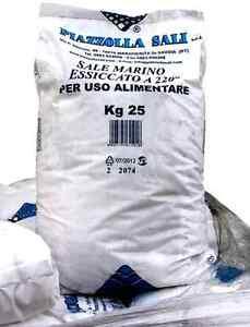 Sale granulare Intex sacco da 25 kg per clorinatore elettrolisi piscina - Rotex