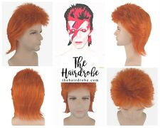 David Bowie Ziggy Stardust Halloween Fancy Dress Wig