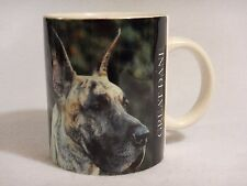 GreatDane Dog : Coffee  Mug Cup - Expres Corp 1994  - Barbara Augello, Designer