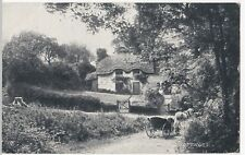 Dorset; Studland Old Cottages PPC By Photochrom, c 1910, Unused, Horse & Cart