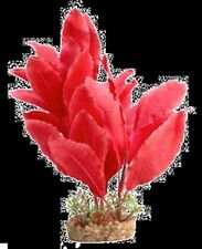 Silk Plant Red Sword With Gravel Base Large 29077 Aqua One