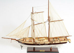 "America's Privateer Lynx 1812 Topsail Schooner Tall Ship Wood Model 34"" New"