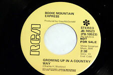 Bodie Mountain Express: Growing Up in a Country Way / Mad Mike's ...  [Unplayed]