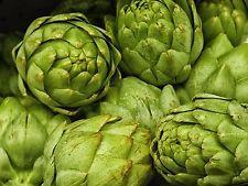 Artichoke Green ball Ukraine Heirloom Vegetable Seeds