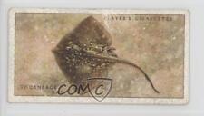 1935 Player's Sea Fishes #8 Thornback Ray Non-Sports Card 0e3