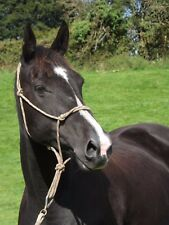 Brown Rope Halter For Natural Horsemanship