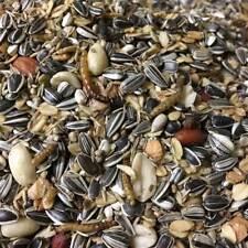 Debes Wildvogelfutter Premium 3 kg mit Mehlwürmern - ohne Milo Mais Weizenkorn