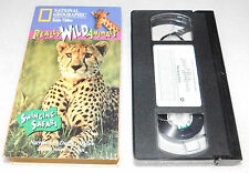 National Geographic Kids Really Wild Animals Swinging Safari VHS Dudley Moore