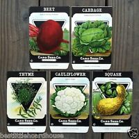 Vintage Original 5 VEGETABLE SEED PACKS CARD SEED CO (SET A) 1920's nos unused