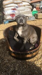 Solid Wooden Oak Recycled Whisky Barrel Dog Bed | Cat Bed.